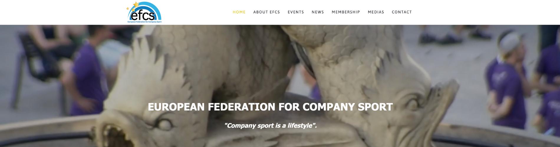screen site EFCS (1)