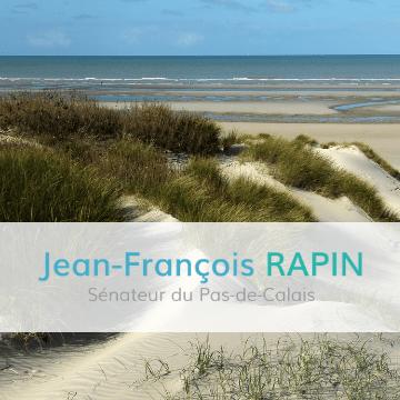 Jean François Rapin